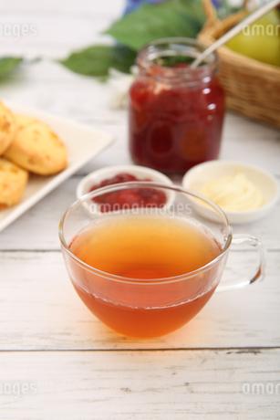 紅茶の写真素材 [FYI01270836]