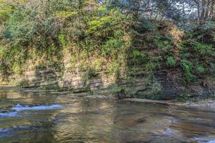 春の養老渓谷の中瀬遊歩道から見た風景の写真素材 [FYI01270905]