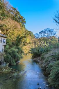 春の養老渓谷の共栄橋から見た風景の写真素材 [FYI01270997]