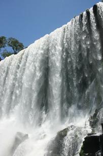 イグアスの滝の写真素材 [FYI01271069]