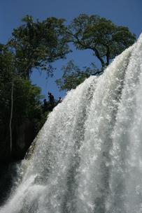 イグアスの滝の写真素材 [FYI01271084]