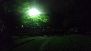 山形の夜の公園の写真素材 [FYI01271088]