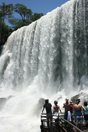 イグアスの滝の写真素材 [FYI01271105]