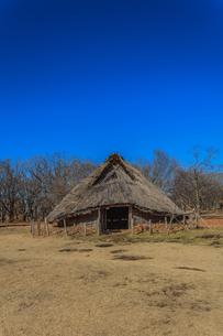 冬の加曽利貝塚の風景の写真素材 [FYI01272184]