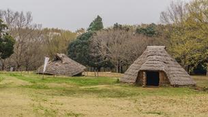 春の加曽利貝塚の風景の写真素材 [FYI01272230]