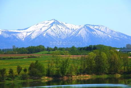 北海道美瑛の残雪の十勝岳の風景の写真素材 [FYI01272240]