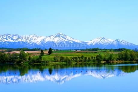 北海道美瑛の残雪の十勝岳の風景の写真素材 [FYI01272241]