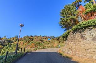 秋の春日山城跡の風景の写真素材 [FYI01272368]