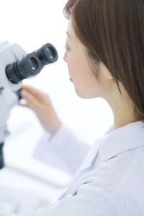 顕微鏡を覗く白衣を着た女性の写真素材 [FYI01274377]