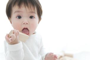 赤ちゃんの写真素材 [FYI01275011]