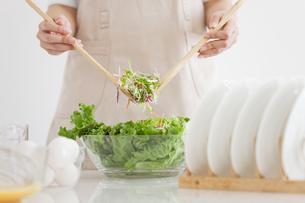 サラダを作っている女性の手元の写真素材 [FYI01275080]