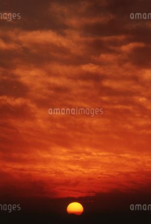 夕日の写真素材 [FYI01275498]