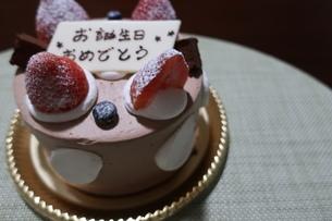イチゴとプレートが乗った誕生日ケーキの写真素材 [FYI01275513]