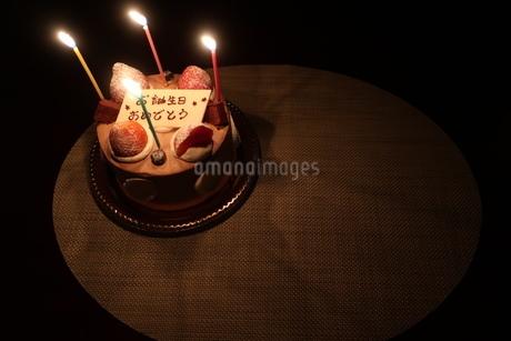 ろうそくがともった誕生日ケーキの写真素材 [FYI01275629]