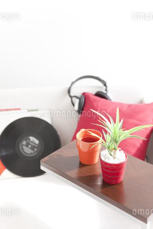 ソファの上に置かれたレコードや観葉植物の写真素材 [FYI01275655]