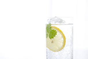 グラスに注がれた炭酸水の写真素材 [FYI01276305]