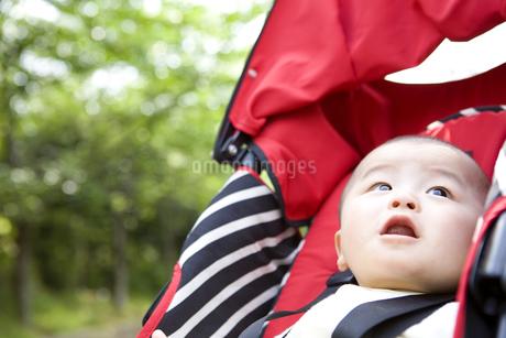 ベビーカーに乗っている赤ちゃんの写真素材 [FYI01276667]