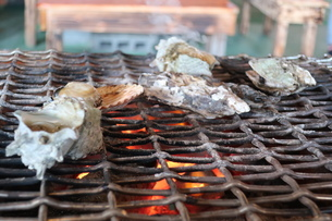 炭火焼の魚介類の写真素材 [FYI01276832]