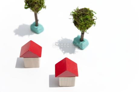 積み木の家の写真素材 [FYI01277051]