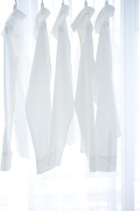 並べてかけられている白いシャツの写真素材 [FYI01277218]