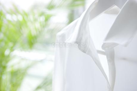 白いシャツの写真素材 [FYI01277221]