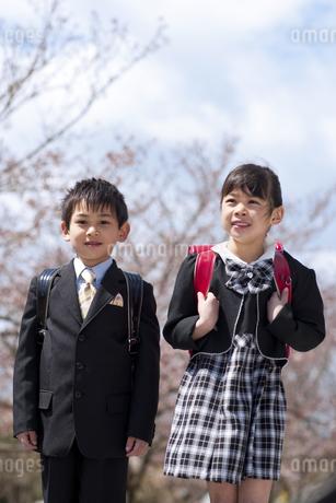 ランドセルを背負っている男の子と女の子の写真素材 [FYI01277737]
