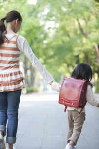 手をつないで歩く親子の写真素材 [FYI01279016]