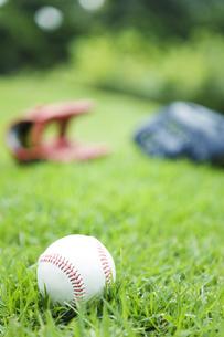 芝生の上に置かれた野球ボールの写真素材 [FYI01279200]