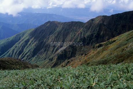 秋の巻機山の写真素材 [FYI01280346]