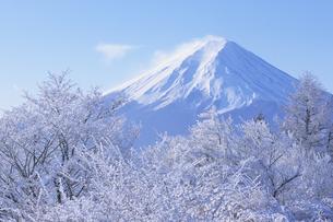 樹氷と富士山の写真素材 [FYI01280599]