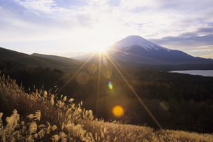 ススキと富士山の写真素材 [FYI01280602]