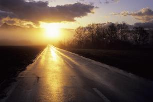 朝日と道の写真素材 [FYI01280667]
