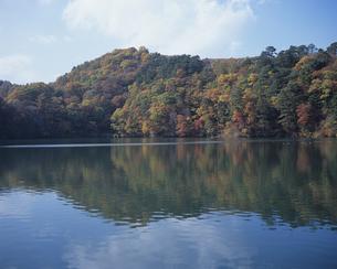秋の松原湖の写真素材 [FYI01280729]