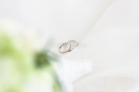 結婚指輪の写真素材 [FYI01280951]