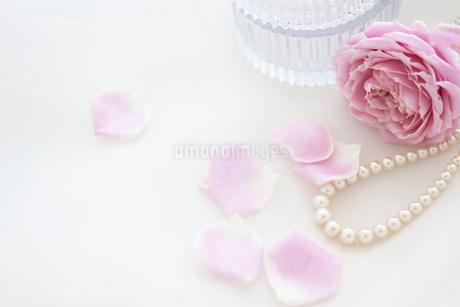 ネックレスと花の写真素材 [FYI01280988]