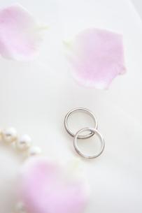 結婚指輪と花びらの写真素材 [FYI01280989]