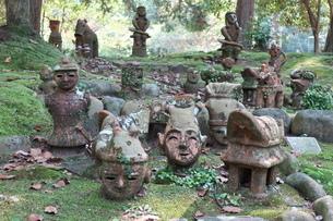 苔むした森の木陰に並んだ埴輪の写真素材 [FYI01281068]