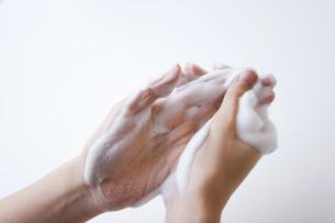 手を洗っている女性の手元の写真素材 [FYI01281123]