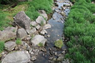 関之尾の滝上流の小川の写真素材 [FYI01281591]