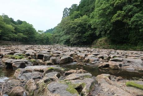 関之尾の滝上流の甌穴群の写真素材 [FYI01281612]