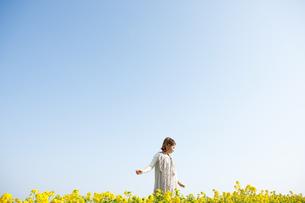 菜の花畑の中に立っている女性の写真素材 [FYI01281796]