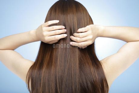髪に触れる日本人女性の後姿の写真素材 [FYI01283351]