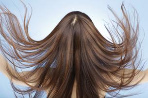髪をなびかせる日本人女性の後姿の写真素材 [FYI01283362]