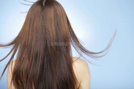 髪をなびかせる日本人女性の後姿の写真素材 [FYI01283363]