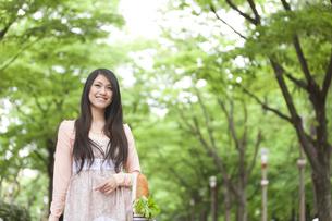 並木道でエコバックを持つ日本人女性の写真素材 [FYI01283394]