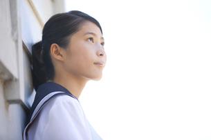 壁にもたれる女子学生の写真素材 [FYI01283531]
