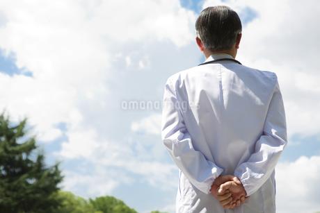 男性医師の後姿の写真素材 [FYI01284488]