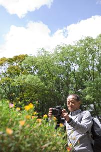 写真を撮る中高年男性の写真素材 [FYI01284598]