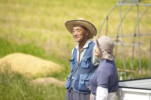 農家の老夫婦と畑の写真素材 [FYI01284837]