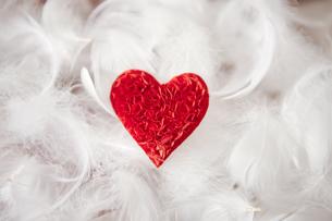 ハートの小物と羽の写真素材 [FYI01285468]